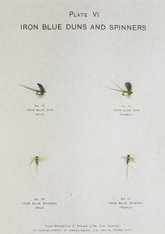 Modern Development of the Dry Fly: the new dry fly