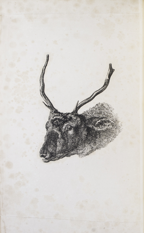 The Art of Deer-Stalking; illustrated by a narrative of a