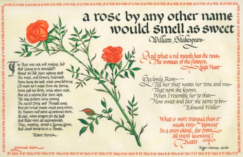 A calligraphic panel on vellum with a watercolor of a stem of roses surrounded by poems and verses relating to roses by Shakespeare, Leigh Hunt, Edmund Waller, John Keats, Robert Herrick and Gertrude Stein. Roger Marcus, scribe.