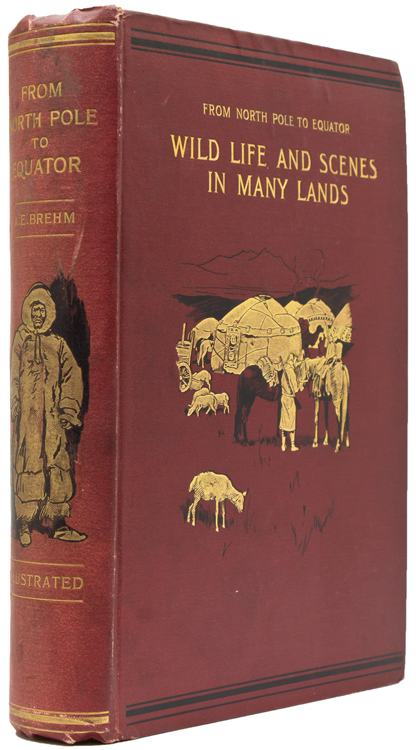 From North Pole to Equator: Studies of Wild Life and Scenes in Many Lands. Translated from the German by Margaret R. Thomson. Edited by J. Arthur Thomson. Alfred Edmund Brehm.