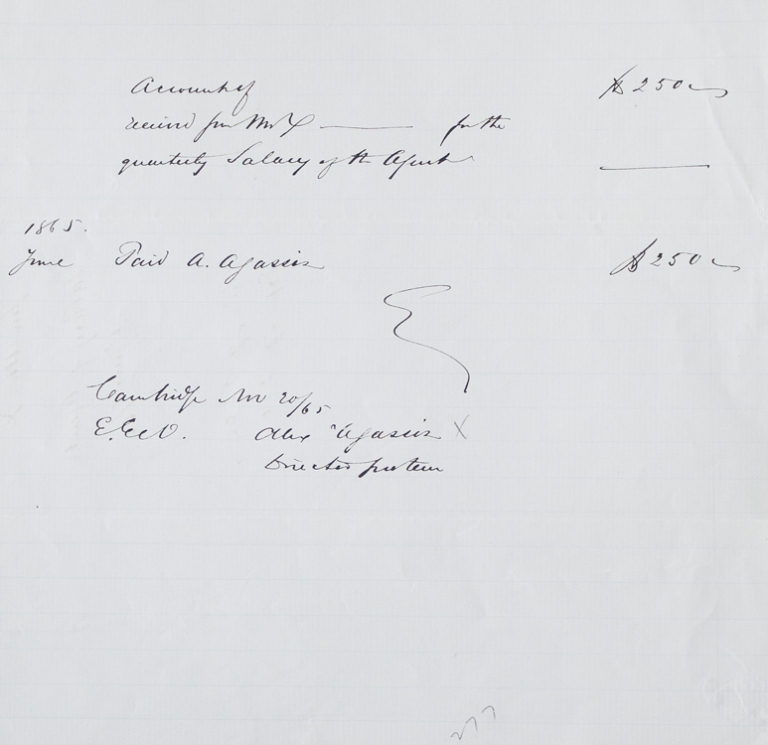 "Manuscript receipt for $250, initialled by Agassiz, ""for the quarterly Salary of the Agent"" Alexander Agassiz."