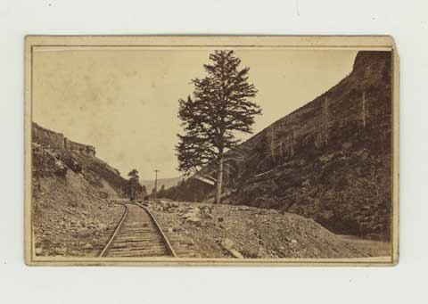 Cartes-de-visite of 1000 Mile Tree, Weber Canyon, Utah [And:] unidentified Western railroad view. Railroads, Savage, Charles Roscoe.