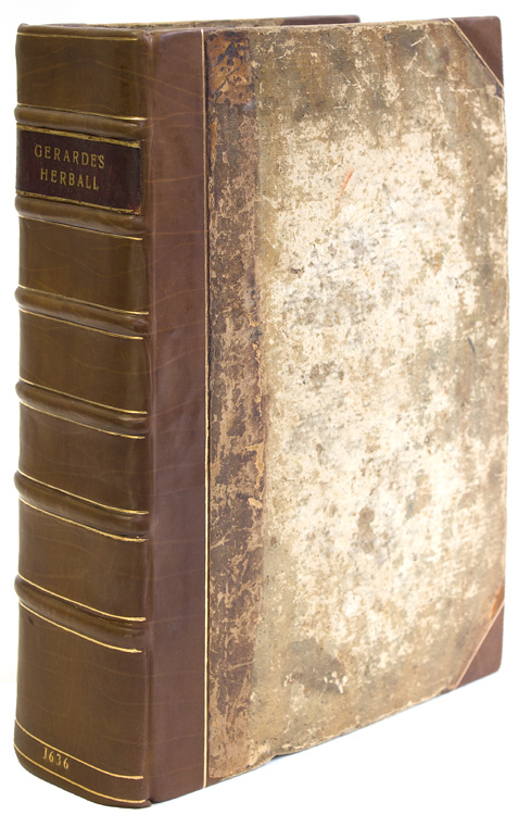 The Herball or Generall Historie of Plantes … very much enlarged and amended by Thomas Johnson. John Gerard.