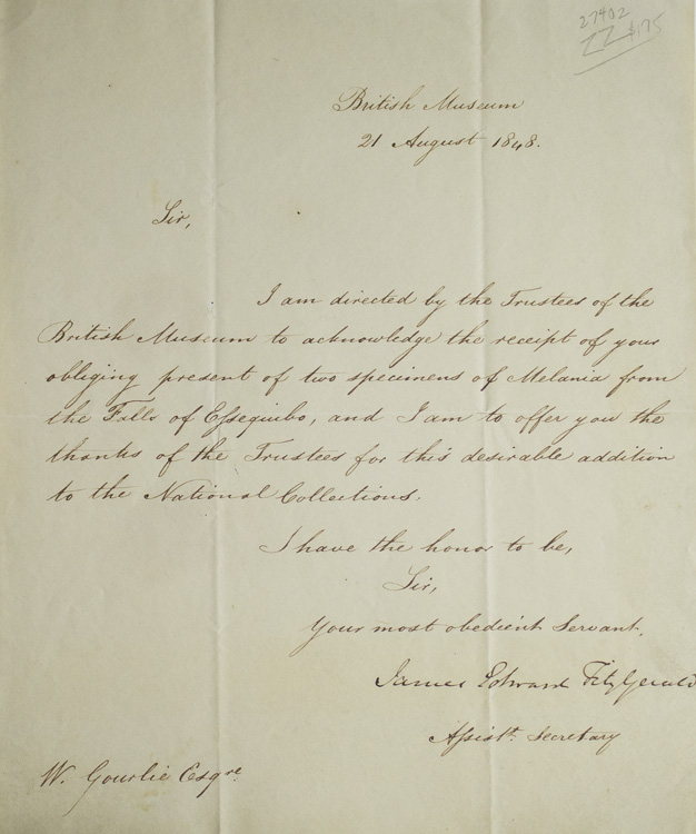 """ALS """"James Edward Fitzgerald"""" as Assistant Secretary of the British Museum to William Gourlie. James Edward Fitzgerald."""