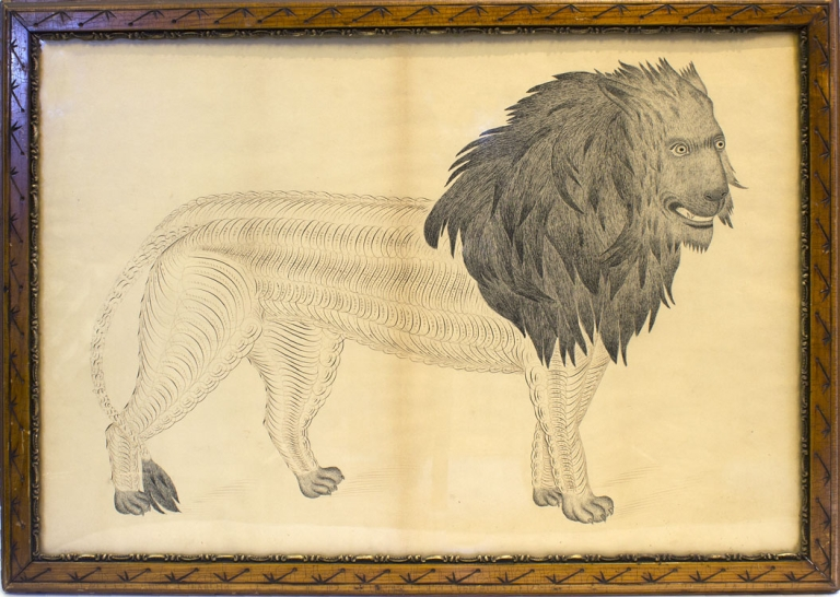 American School Calligraphic Drawing of a Lion, pen and ink. N. P. Bailey.
