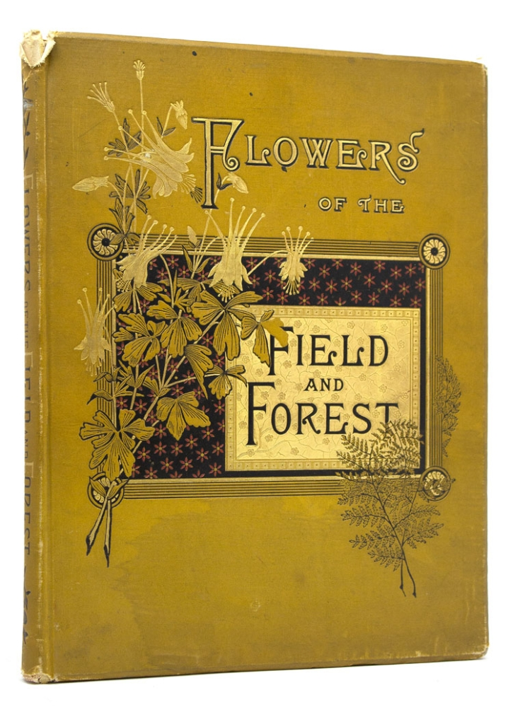 Flowers of the Field and Forest. From Original water-color drawings after nature. Rev. A. B. Hervey.