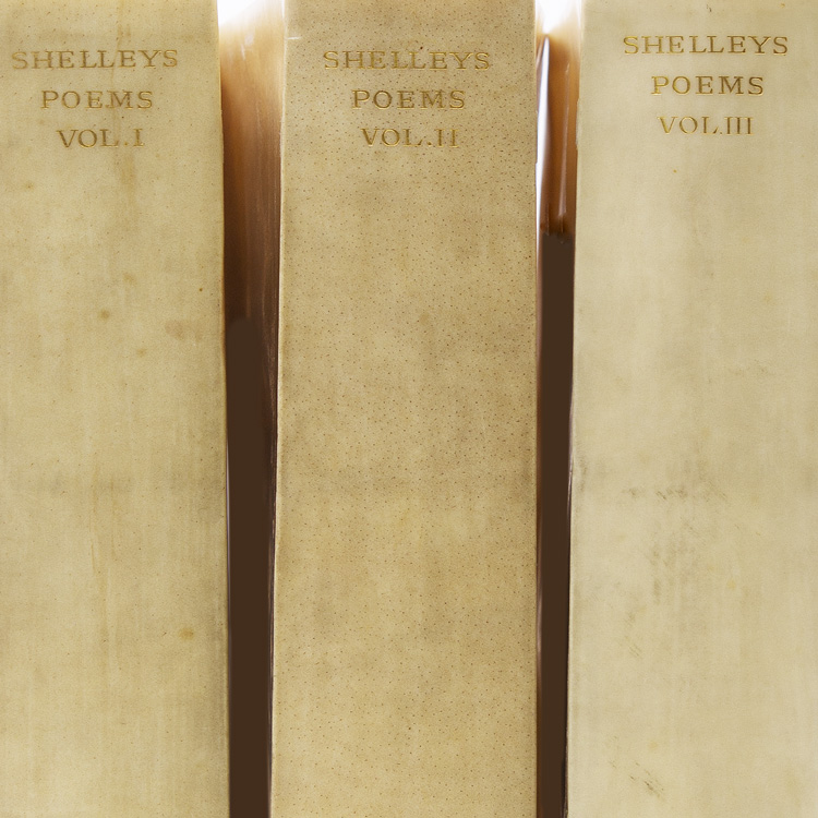 The Poetical Works of Percy Bysshe Shelley. Shelley, sshe.