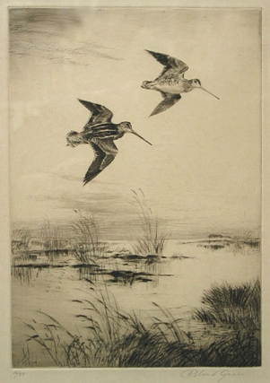 "Snipe in Flight: Drypoint etching, signed in pencil in lower margin (""Roland Green""), and..."