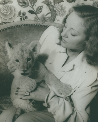 Portrait photograph of Tallulah Bankhead, with her lion cub Winston Churchill. Tallulah Bankhead,...