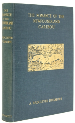 The Romance of the Newfoundland Caribou. An Intimate Account of the Life of the Reindeer of North...