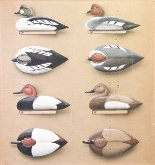 Color Patterns for Decoys [Mallards, Pintails, Blackduck, Green-Winged Teal; Canada Goose, Brant, Widgeons, Surf Scooters, American Scooters; Broadbills, Redheads, Canvasbacks, Goldeneyes]