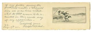 Proof etching: Three ducks descending from the left onto open water, two others visible in the...