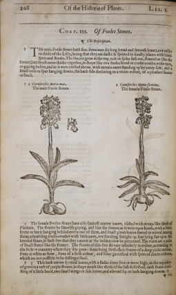 The Herball or Generall Historie of Plantes … very much enlarged and amended by Thomas Johnson