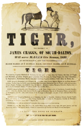 "A Stud poster for ""Tiger, the Property of James Craggs, of South-Dalton will serve Mares this..."