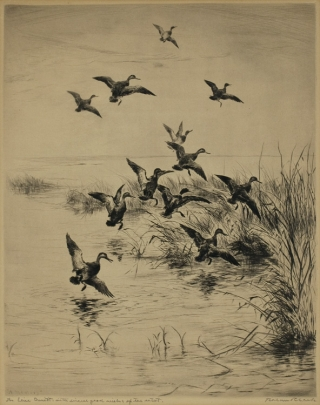 [Album of 6 etchings and aquatint engravings from the personal collection of Eugene V. Connett, 3d]