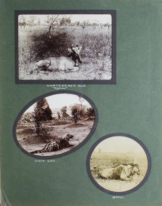 Album of Photographs of British Central Africa