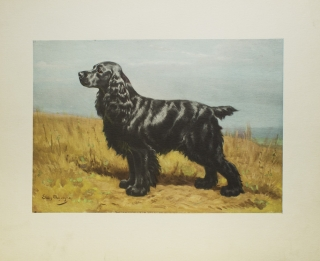 10 Lithographs of Dogs on Art Paper. Edwin Megargee, 1883–1958.