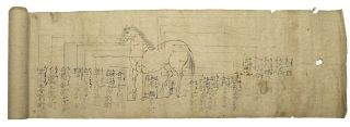 Manuscript Scroll for horses doctors with anatomical sketches. Veterinary Medecine