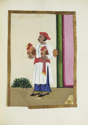 Album of Indian miniatures