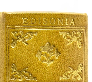 Collection of 49 volumes all belonging to various members of the Edison family