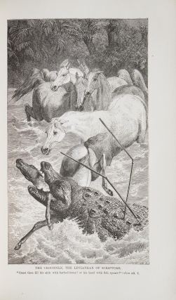 Wood's Bible Animals. A Description of the Habits, Structure and Uses of Every Living Creature Mentioned in the Scriptures, from the Ape to the Coral … To which are added articles on Evolution by Rev. James McCosh, D.D., President of the College of New Jersey, and Research and Travel in Bible Lands by Rev. Daniel March