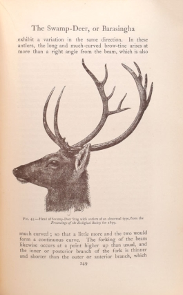 The Game Animals of India, Burma, Malaya and Tibet. Second Edition Revised by J.G. Dollman