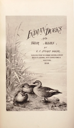 The Indian Ducks and Their Allies