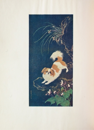 Dogs of China & Japan. In Nature and Art