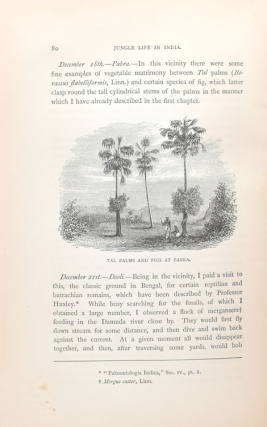 Jungle Life in India; or the Journeys and Journals of an Indian Geologist