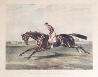 Alice Hawthorne. (The Queen of the Turf) Winner of 47 1/2 Races (Including 17 Cups and 18 Queen's...